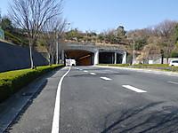 Imgp0256